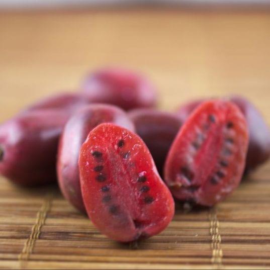 Mirzan Baby Kiwi plants are also known as kiwi berry