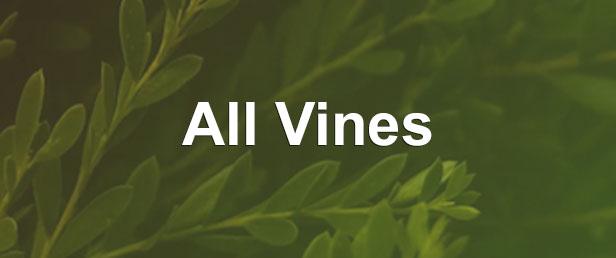 menu all vines 3 -