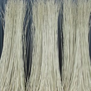 Bundles of grey green almond leaved willow rods dried for basketry.